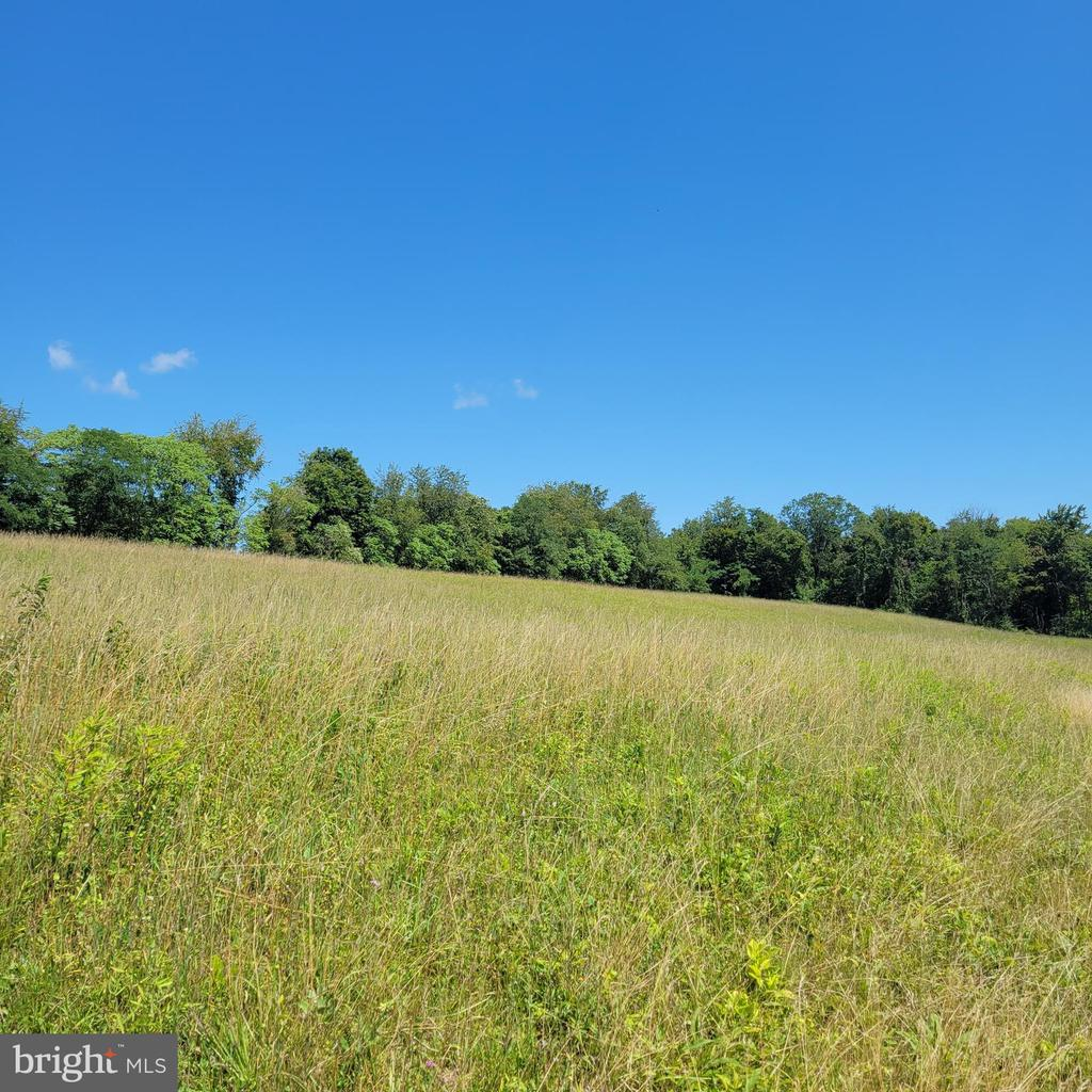Beautiful Building Lot. Come see this 3.26 acre lot to build your home on. With a large portion of lot being cleared you could start building very quickly. You'll have the feeling of being in the middle of nowhere but only be a mile from town.  Seller also has another 15 acre parcel very close that could be used for hunting ground. MLS # WVMO02000160