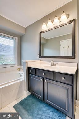 1709 Blue Flint Ct Reston VA 20190