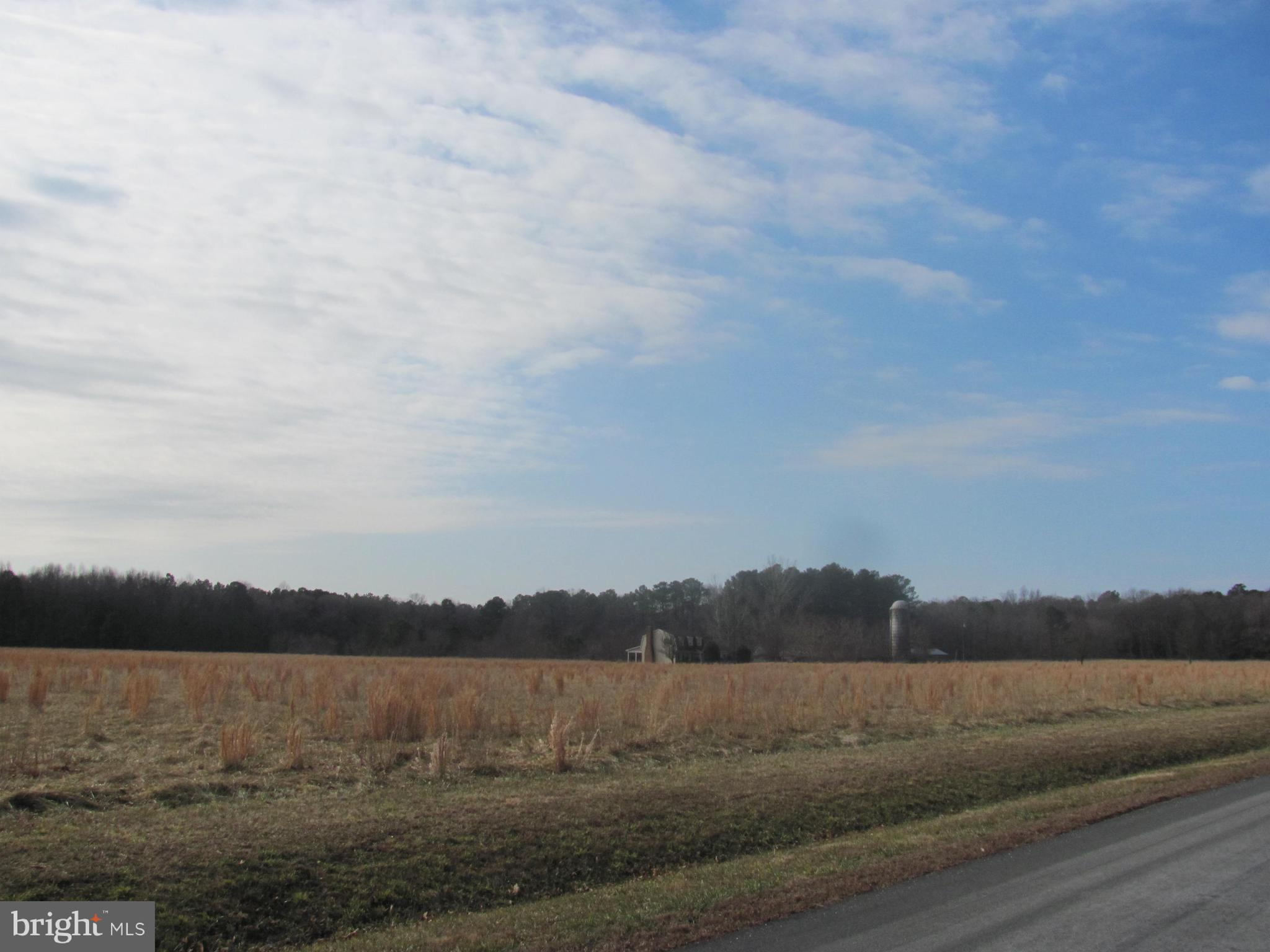 ATTENTION SUSSEX COUNTY BUILDERS AND DEVELOPERS! Unlimited Potential and Endless Possibilities! Beautiful 58.23 acre parcel with lots of road frontage, tree lined perimeter, small pond and a silo. Conveniently located off of RT. 5 with close proximity to RT. 1 and beaches. Great opportunity for development! For security reasons, please don't walk the property or drive up the driveway to the house without an appointment. Don't want to startle the homeowners. Thank you.