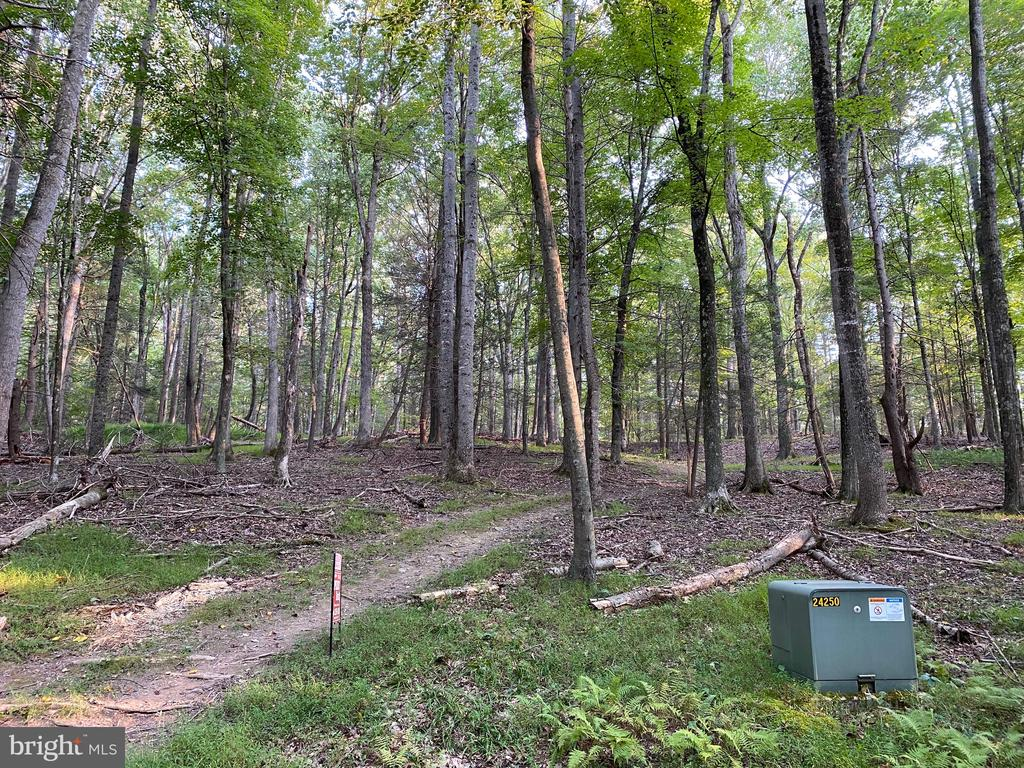 Beautiful Building Site - 2.95 acres situated at the end of the cul-de-sac in Morgan Woods Sub.   Underground electric, good access and use of the common lot along the Cacapon River.     Camping allowed!  See protective covenants and restrictions.