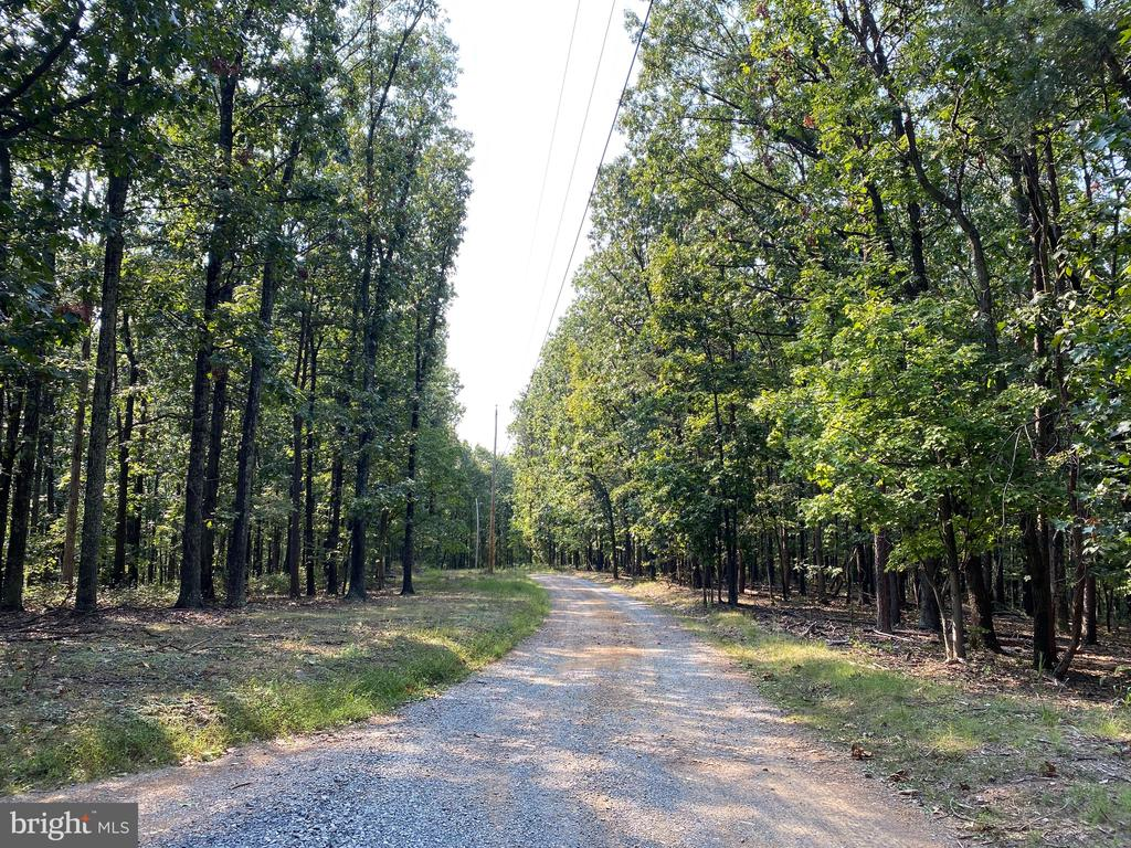 Nice Building Lot in the Southern end of the County - 4.7749 acres that is divided by the subdivision road which insures you wont have a neighbor right across the road.  If you work in Winchester this lot is perfect for an easy commute.